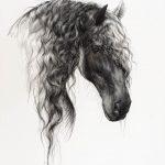 Pferdeportrait in Pastellkreide